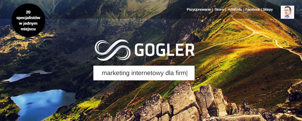 Gogler marketing internetowy dla firm